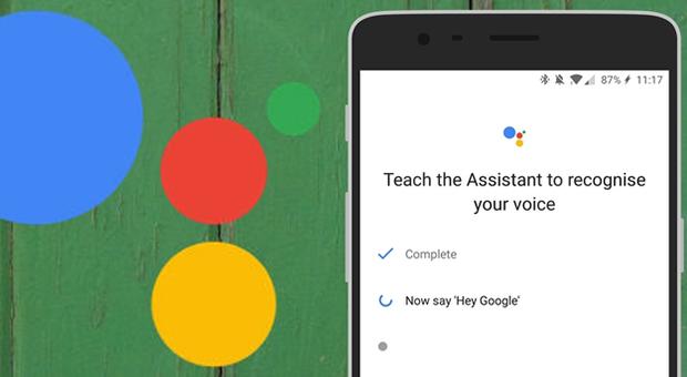 Google Assistant naar Nederland