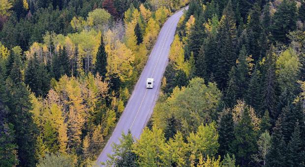 bos - auto - apps voor onderweg